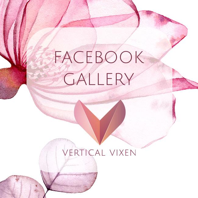 Vertical Vixen Facebook
